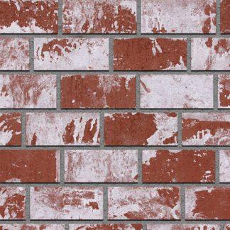 Thin brick-pacific clay